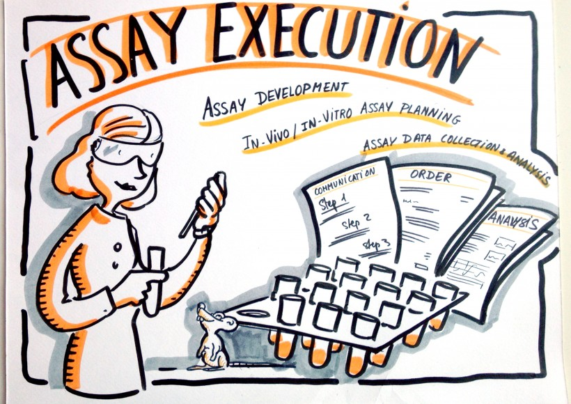 assay execution_web